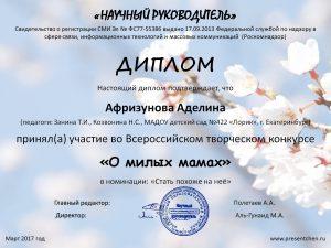 Диплом_Афризунова
